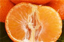 为什么说橘子全身是宝?橘皮、橘络都不要再扔了!